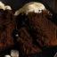 Брауни и шоколадный кекс