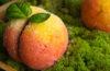 Пирожное «Персик» из советского прошлого